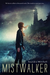 Review: Mistwalker by Saundra Mitchell