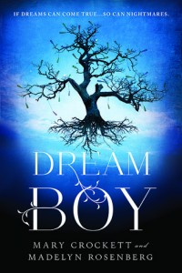 Review: Dream Boy by Mary Crockett and Madelyn Rosenberg