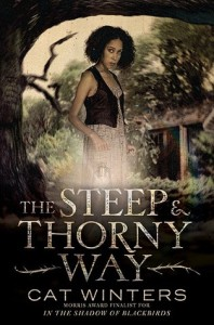 Review: The Steep and Thorny Way by Cat Winters